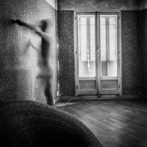 transparences_damien_-15