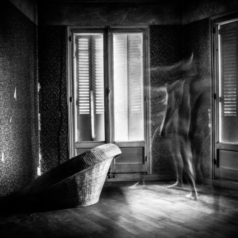 transparences_damien_-2
