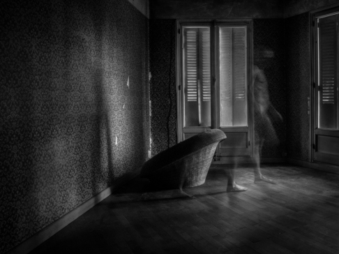 transparences_damien_-4